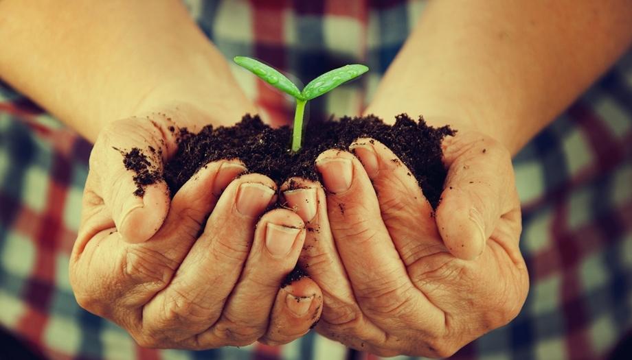Murcia se preocupa por la agricultura ecológica y sortea 44 parcelas para su cultivo
